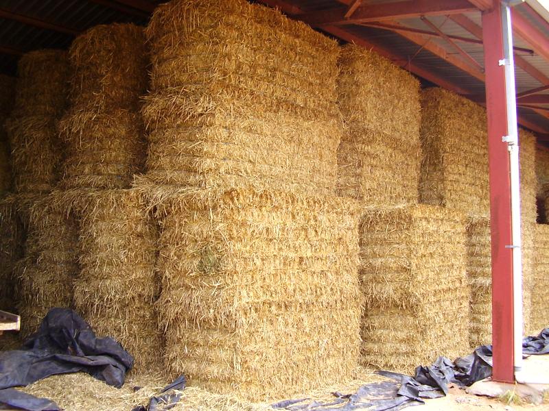 hay-in-barn